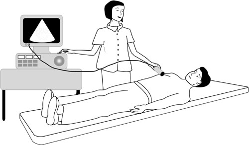 Echocardiogram-hamilyon.com