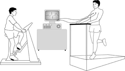 Treadmill-hamilyon.com