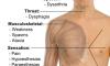 Multipl Skleroz Hastalığının Belirtileri Nelerdir? What is Symptoms of Multiple Sclerosis?