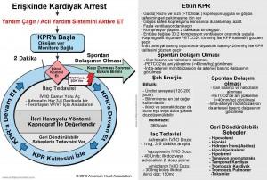 Kardiyak-Arrest-dairesel-Algoritma-hamilyon.com