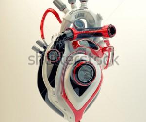 Kalp nakli ve suni kalp destek sistemleri programı nedir?