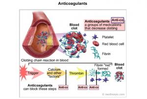 anticoagulants-hamilyon-kalp-ilaclari