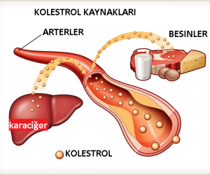 Kolestrol düşürücü kalp ilaçları nelerdir? what is Cholesterol-lowering medications for heart?