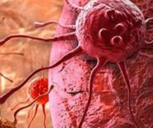 Bu Besinler Kanserden Koruyor!